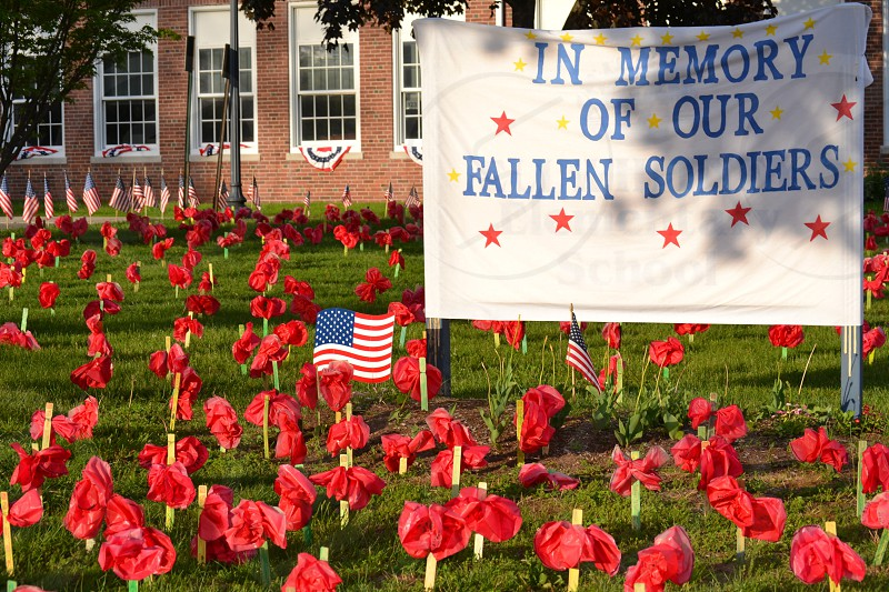 in memory of our fallen soldiers photo
