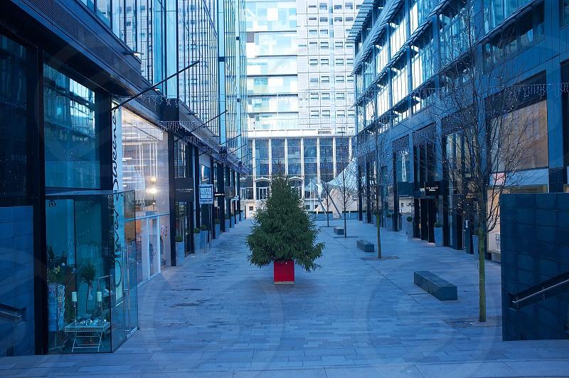 Urban Christmas tree photo