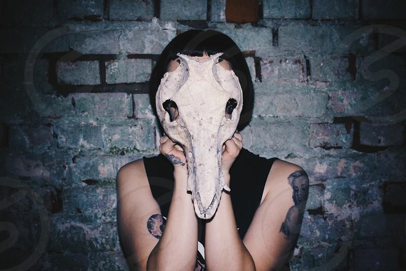 person wearing animal skull mask photo