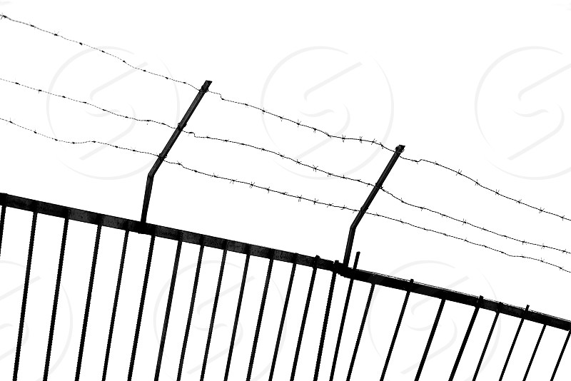 Barbed Wire. photo
