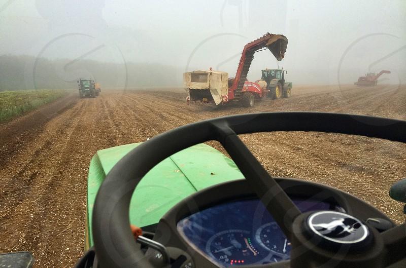 Lifting potatoes on a foggy September morning photo