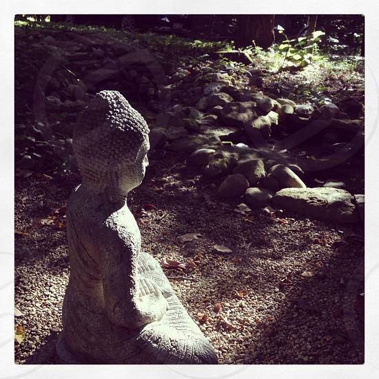 Buddha resting by a koi pond photo