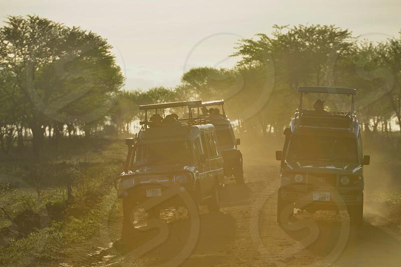 African Safari - Tanzania photo