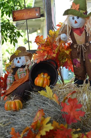 Halloween decorations photo