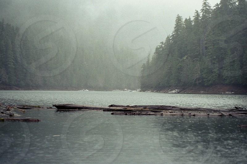 Nature Eerie Woods Wood Forest Lake Ice Mountain Fog Mist Icy Snow Rain photo
