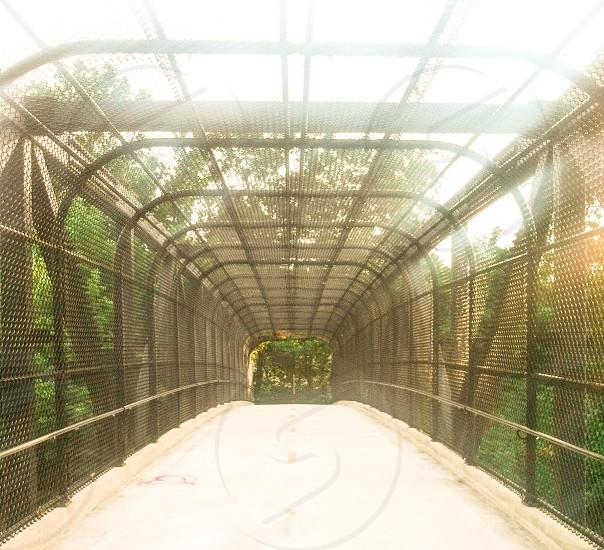 Lines Covered Walkway Path Human Bridge photo