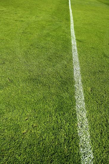 football green grass sports field camp texture photo
