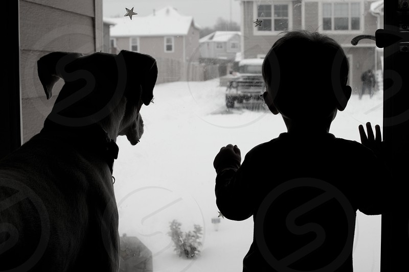 boy and dog silhouette photo