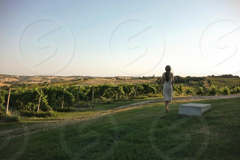 Woman walking in vineyard sunset photo