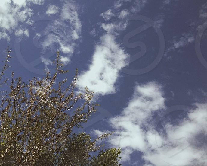 Clear sky Santiago photo