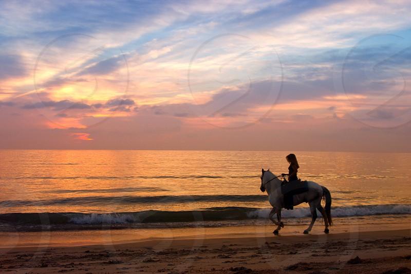 Woman riding horseback at the beach at sunrise photo