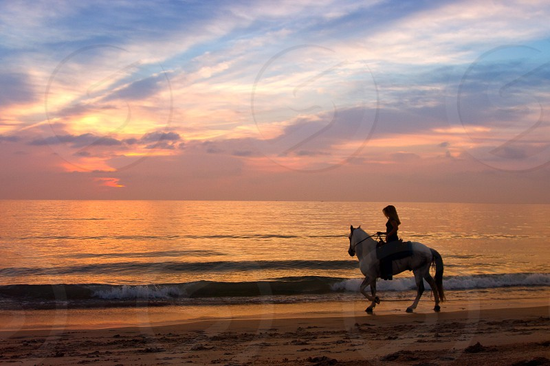 Woman riding a horse at sunset on the beach photo