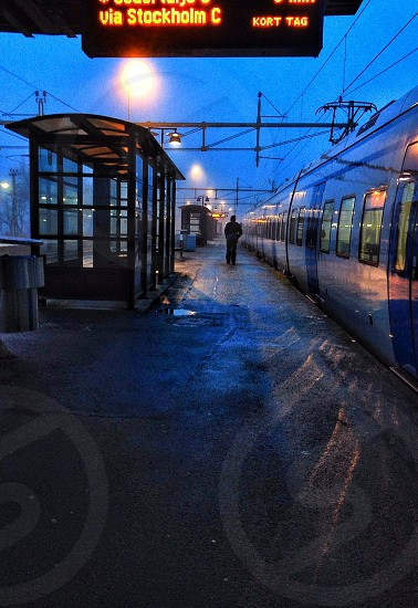 Early morning Sweden photo