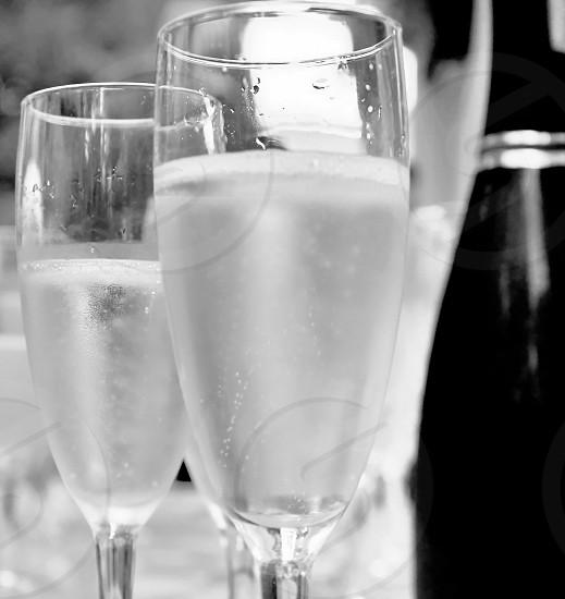 Sparkling wine Prosecco black & white photo