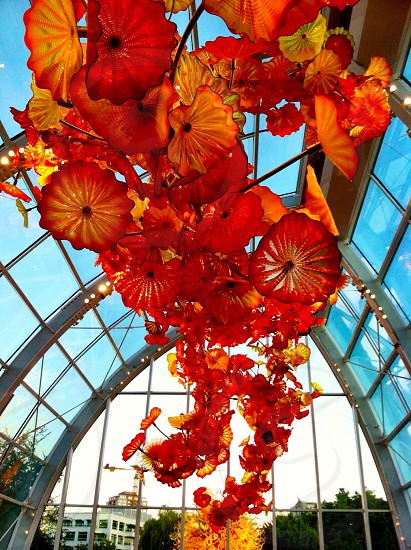 red flowers ceiling decorations photo