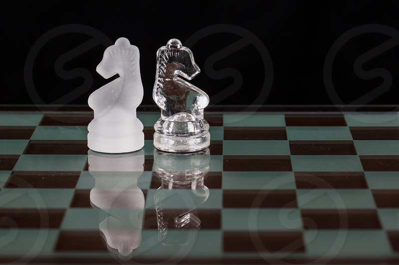 clear glass knight pieces photo