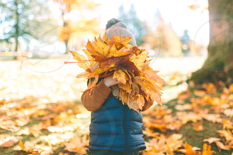 A little boy playing in the fall leaves.  photo
