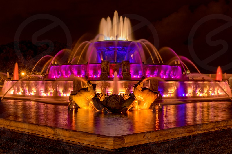 The Buckingham Fountain in Chicago Illinois lit up with color lights at night photo