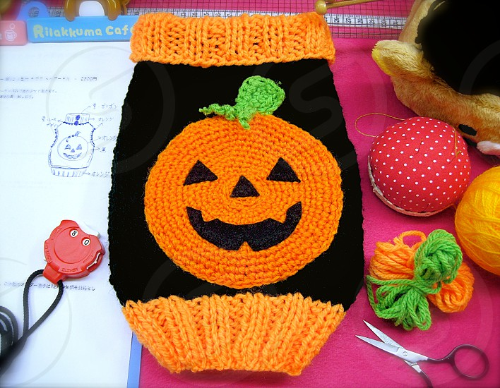 2014/10/21_Snapwire_Submission for PHOTO CHALLENGE: 'Halloween' (1) Halloween Handmade Knit Sweater for my dog Orange and Black Pet handmade wear Knit Halloween photo