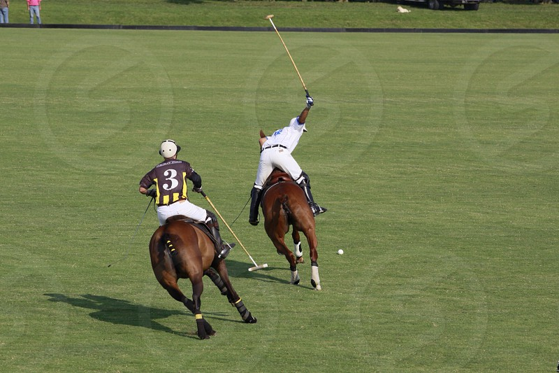 2 horsemen on green grass field  during daytime photo