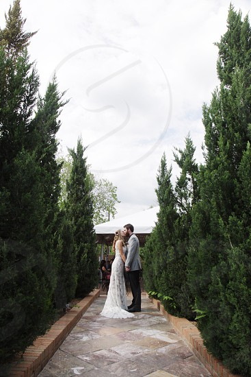 bride and groom kissing each other between green trees under white clouds photo