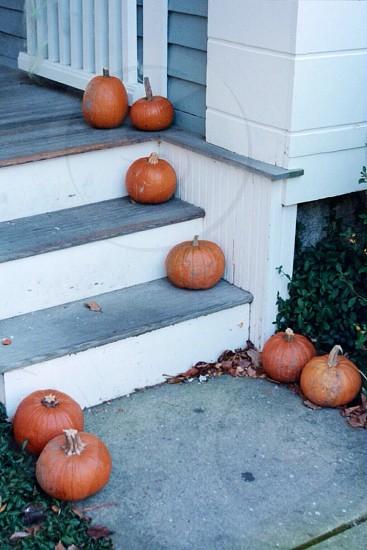 Stonington Village Connecticut photo