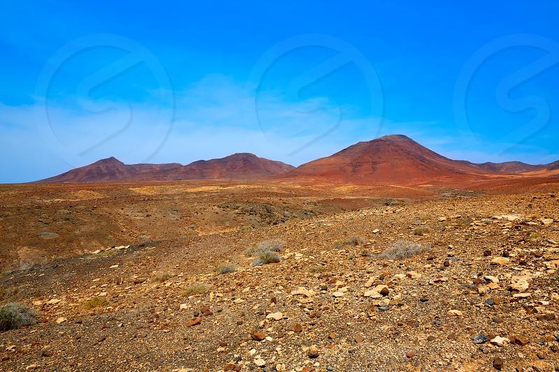Jandia Park Fuerteventura at Canary Islands of Spain photo