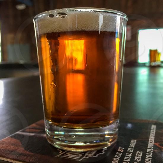 beer love craft microbrew taste discerning drink brew glass drink alcohol art fine sample photo