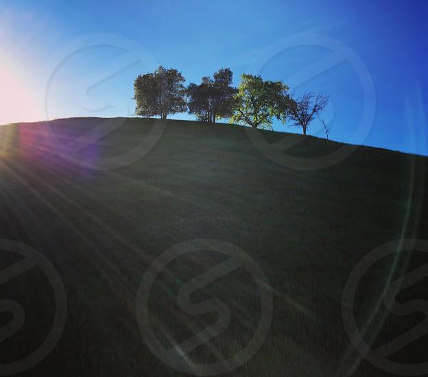 Trees green hills sun reflection blue sky California Spring BayArea  photo