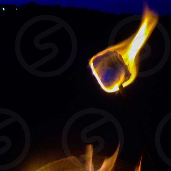 Campfire marshmellow photo