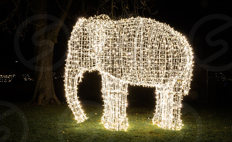 Colorful lights at the buildings and park of the Stuttgart zoo Wilhelma during the Christmas Garden light show photo