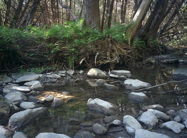 water ripples photo