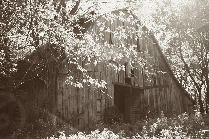 barn missouri country rustic sepia overgrown photo