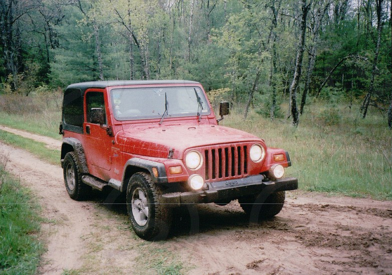 Jeep in the woods photo