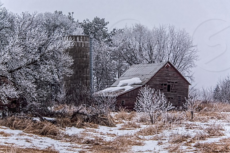 Winter on the farm photo