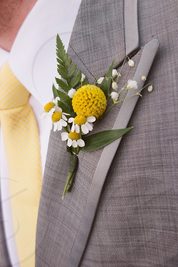 yellow flower on a gray suit photo