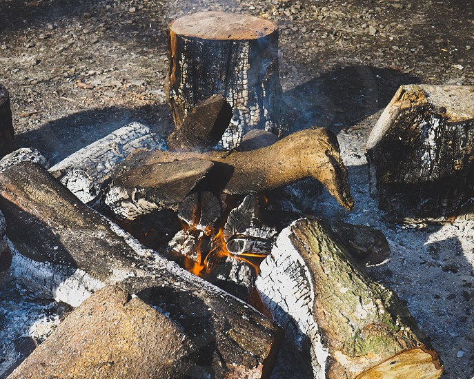 Large logs burning on the campfire photo