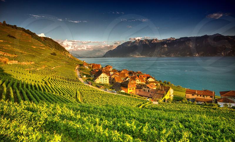 Epesse Switzerland photo