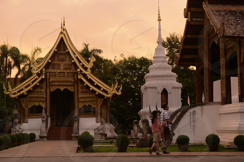 the wat  Phra Sing in the city of chiang mai in the north of Thailand in Southeastasia.  photo
