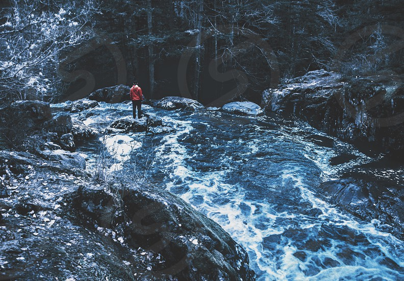 man standing on rock in middle of river on forest photo