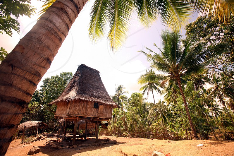 a traditional house at the village of Lospalos in the east of East Timor in southeastasia.
