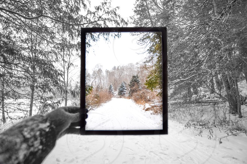 Winter framed photo