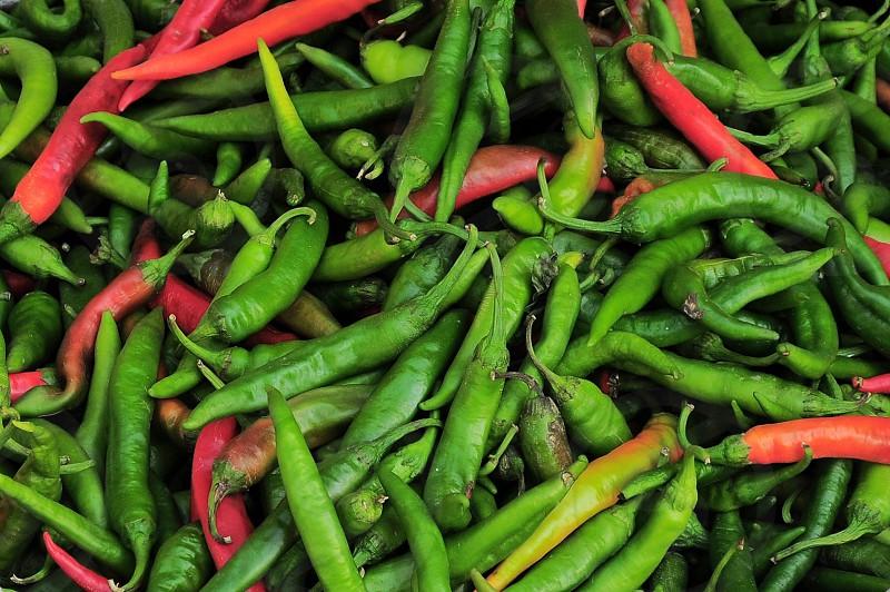 green chili photo