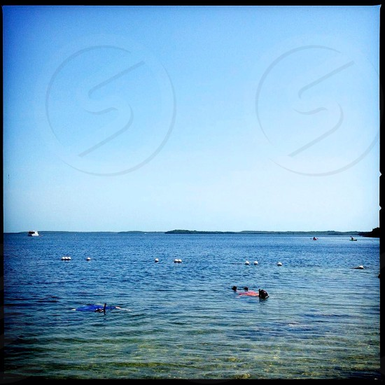 Snorkeling in Florida USA  photo