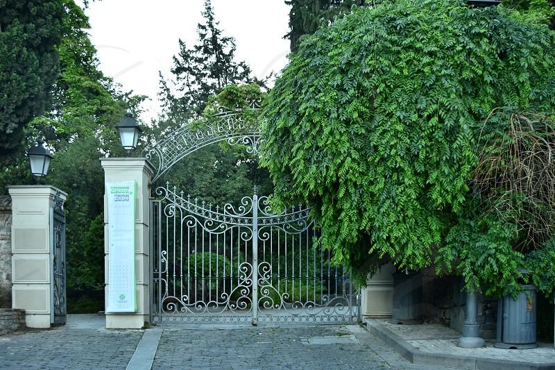 Botanical garden in Tbilisi  photo