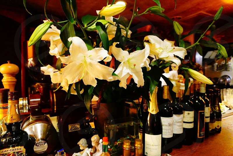 white flowers with bottle of wine  photo