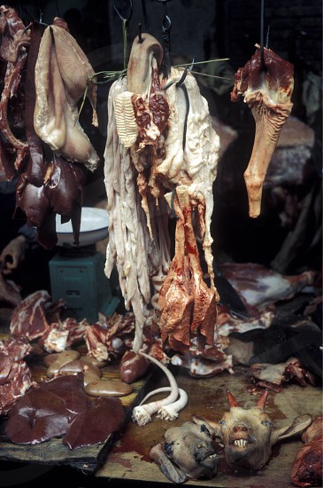 the animal Market in the city of Canton or Guangzhou in the north of Hongkong in the province of Guangdong in china in east asia.  photo