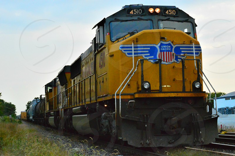 yellow and black union pacific train beside green plants photo