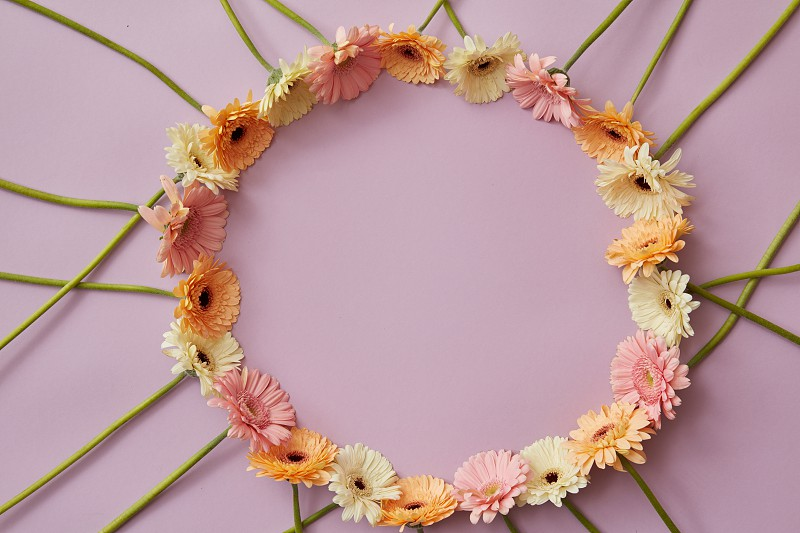 A creative round frame of multicolored gerberas with a place under the text for a postcard for spring holidays . Top view photo