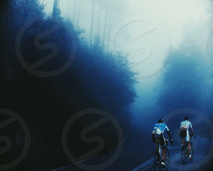 misty forest road with bikers photo